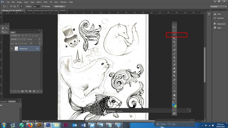 Seal in Sketchbook