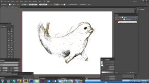 Starting out drawing in Adobe Illustrator